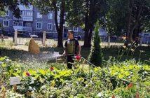 Спасаем цветники от жары