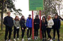 Акция «Чистый лес»: присоединяйтесь!